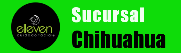 bannerChihuahua